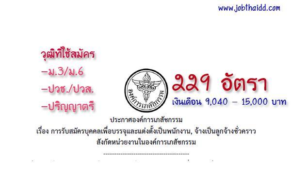 องค์การเภสัชกรรม รับสมัครบุคคลเพื่อบรรจุเป็นพนักงาน,ลูกจ้างชั่วคราว 229 อัตรา