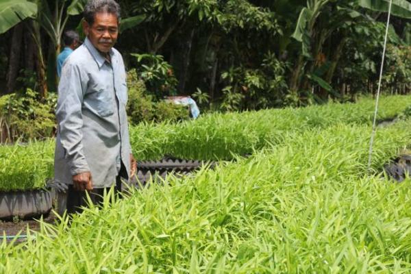 อาชีพ ปลูกผักบุ้งจีน ในล้อยางรถยนต์ สร้างรายได้ 2.5 หมื่นบาทต่อเดือน